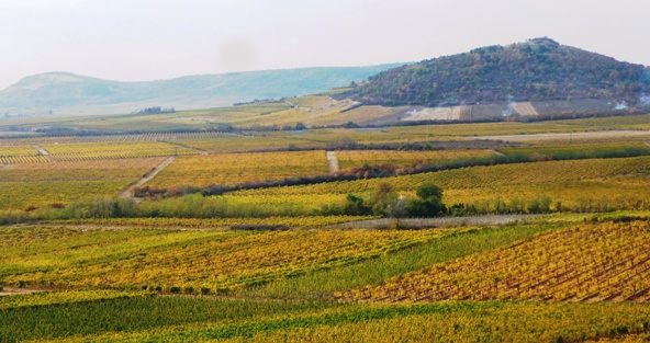 El vino naranja húngaro: cada vez más productores se animan a hacerlo – un caso ejemplar